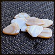 Shell Tones - Mussel Shell - 4 Guitar Picks | Timber Tones